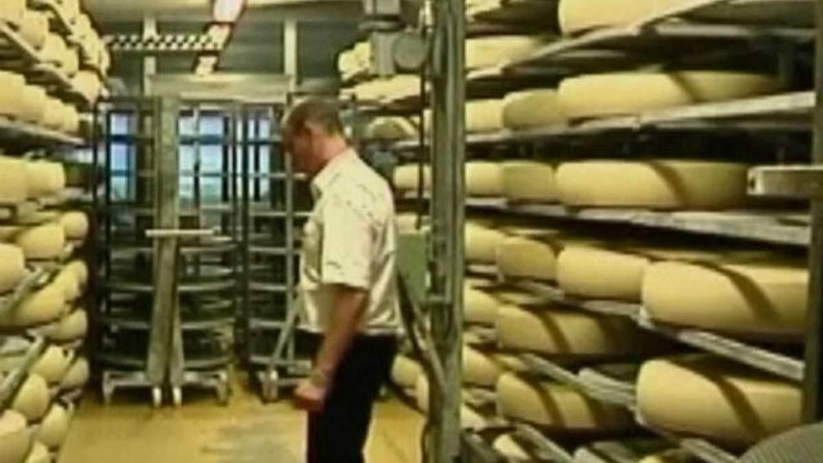 У Данії роздадуть безпритульним 15 тонн сиру, призначеного для експорту в Росію.