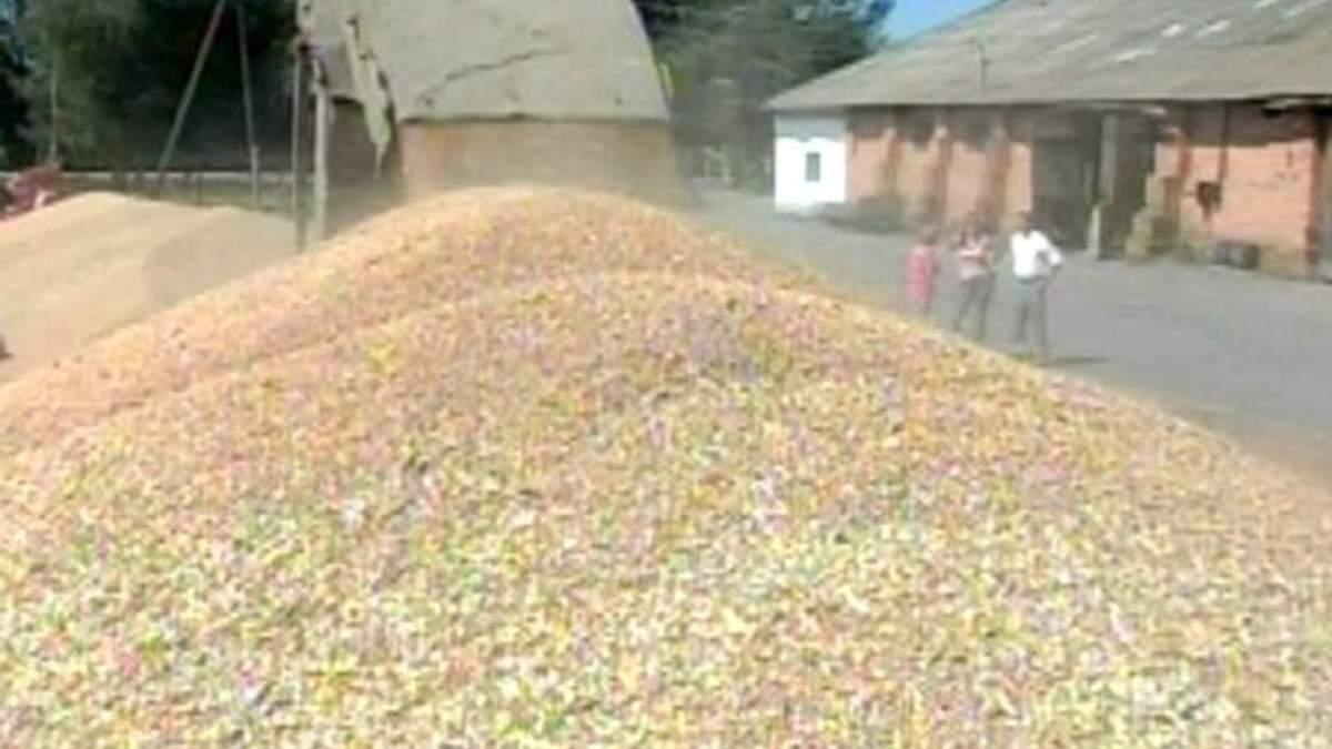 Україна б'є рекорди в експорті зерна