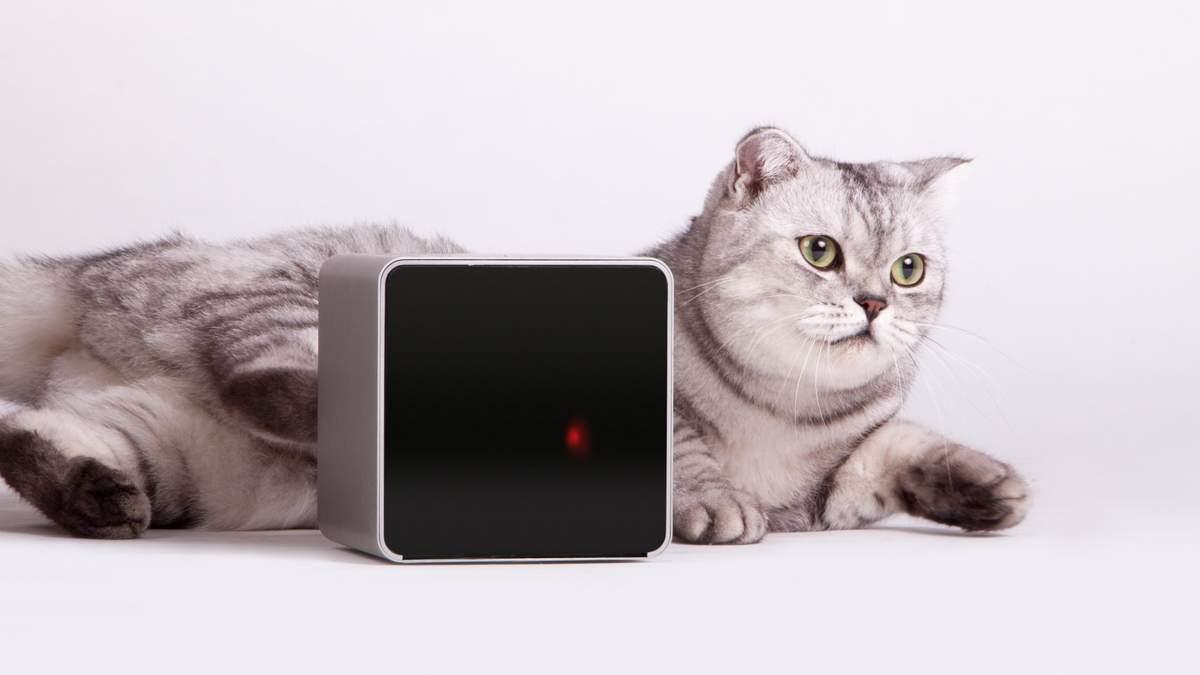 Український стартап Petcube запустив кампанію по збору коштів на нові пристрої