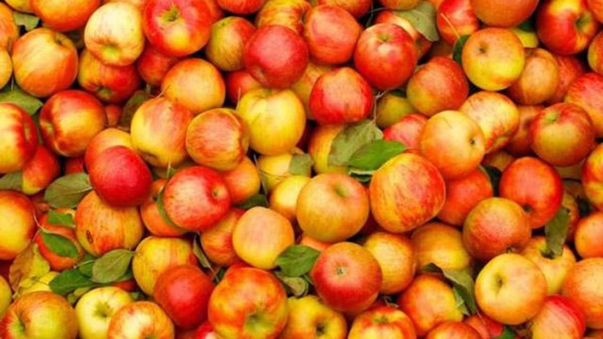 Беларусь продала России в 5 раз больше яблок, чем вырастила