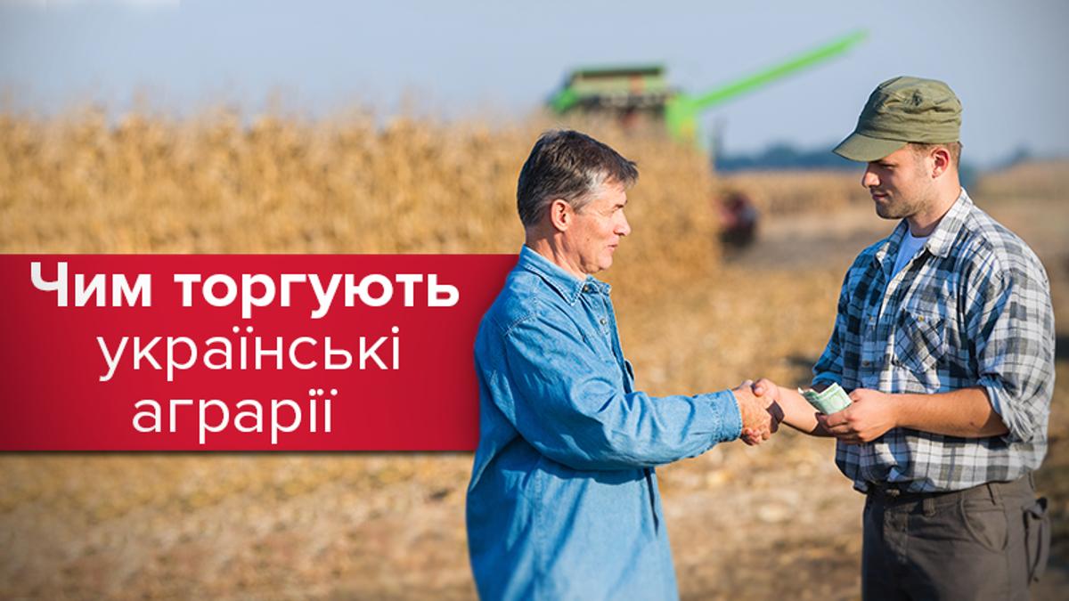 Експорт аграрної продукції зріс на 24%