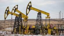 Ціни на нафту впали: країни ОПЕК+ не можуть домовитися про умови видобутку на 2021 рік