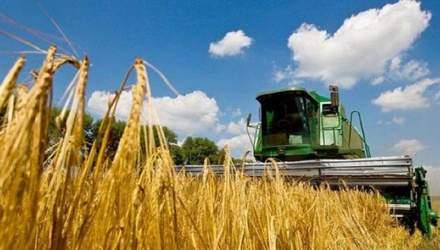 Україна – один із найбільших експортерів агропродукції до ЄС