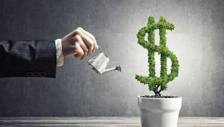 Годовой заработок на инвестициях: во что нужно было вкладывать в 2020 году