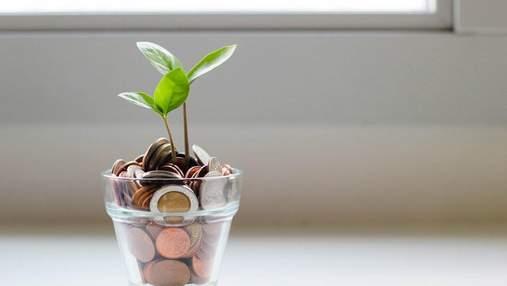 Куди вкладають гроші професіонали: ідеї для приватних інвесторів на 2021 рік