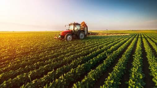 Україна потрапила в четвірку країн за експортом сільськогосподарських продуктів в ЄС